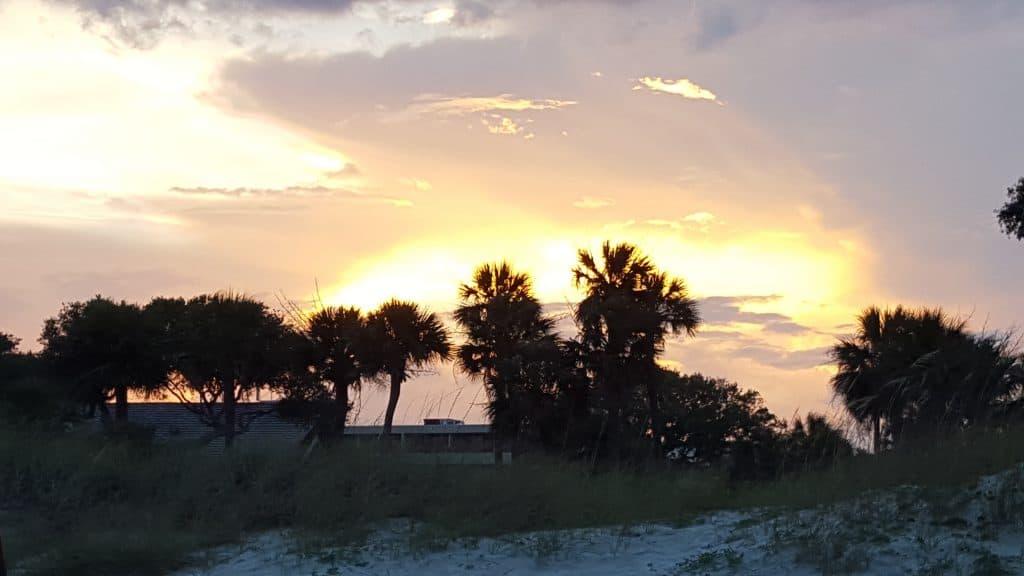 Sunset behind trees on beach